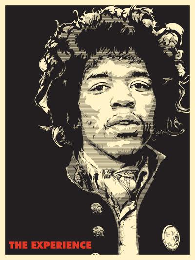 Joshua Budich 'Hendrix' Size: 18 x 24 Inches