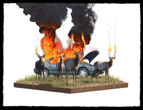 Josh Keyes 'Scorch II' Edition of 50 Size: 24 x 18 Inches $250 Each ???
